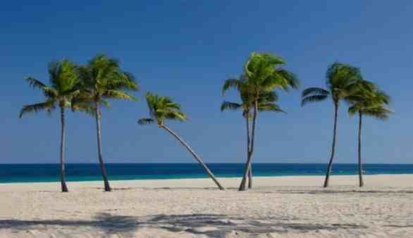 Floridas Süden